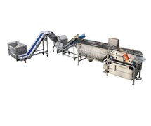 旋流式蔬菜生产线STW-306单缸