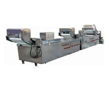 STW-306连续式洗菜机